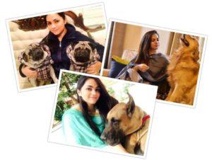Shooter-Apurvi-Chandela-Biography-an-animal-lover